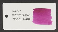 Pilot Iroshizuku Yama-Budo - Word Card