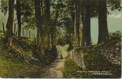 Mount Vernon Pitch, Rodborough