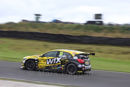 Adam Morgan in BTCC race one at Knockhill Weekend 2016