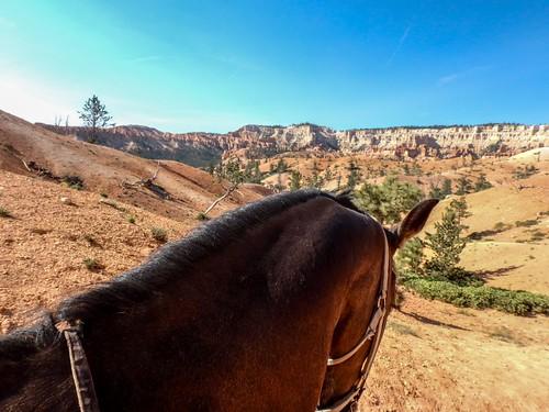 Bryce canyon - USA