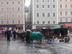 Carriages in the rain in Domplatz