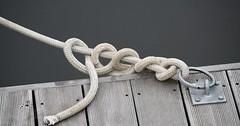 """Der Knoten. Die Knoten. Ein Knoten im Seil. • <a style=""""font-size:0.8em;"""" href=""""http://www.flickr.com/photos/42554185@N00/28019833024/"""" target=""""_blank"""">View on Flickr</a>"""