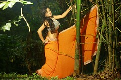 South actress Madhu Chanda Photos Set-1-Hot In Saree (14)