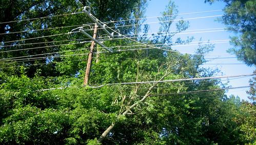 20120630 0749 - storm damage while yardsaleing - tree stuck in powerlines - IMG_4505