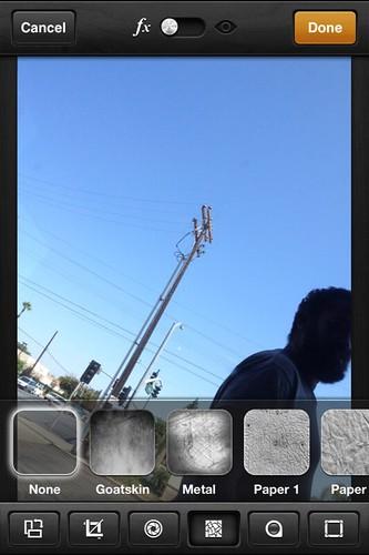 Camera Roll-3316