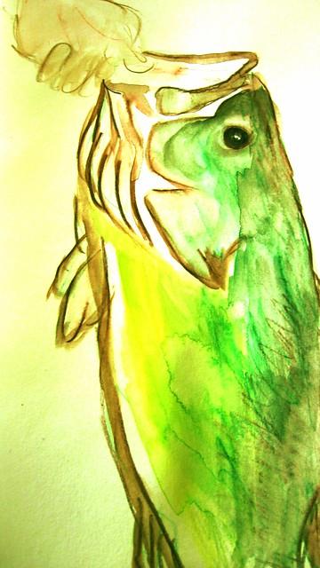 Farm Pond Bass