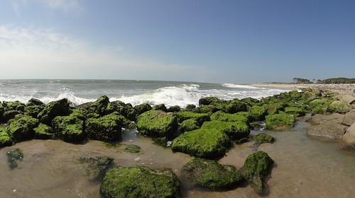 Kure Beach / Fort Fisher