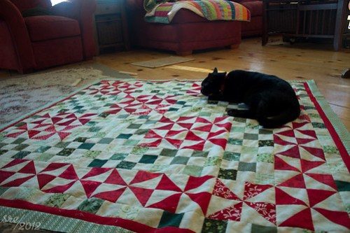 Miles, Quilt Inspector