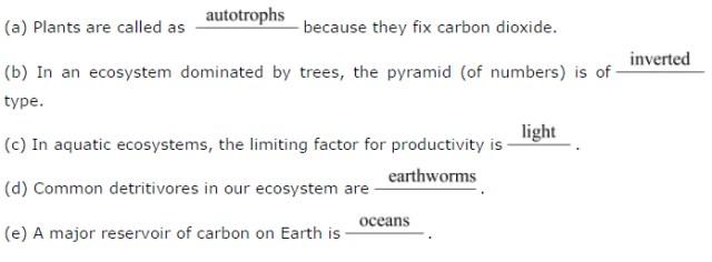 NCERT Solutions Class 12 Biology Chapter 14: Ecosystem
