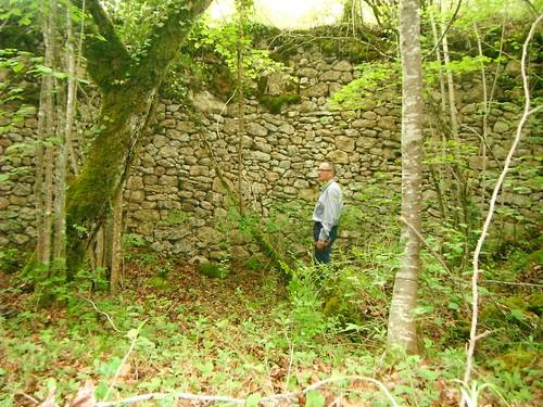 Poua de Puig-antic