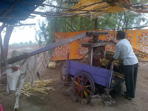 Best Sugarcane juice