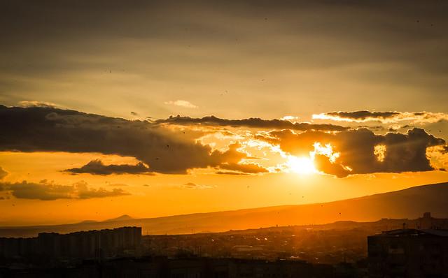 Sunset and birds over Yerevan