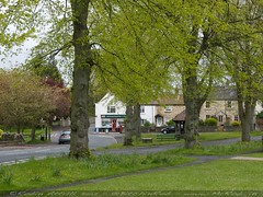 2012-05-19-Burton-Leonard-Walk-P5190003