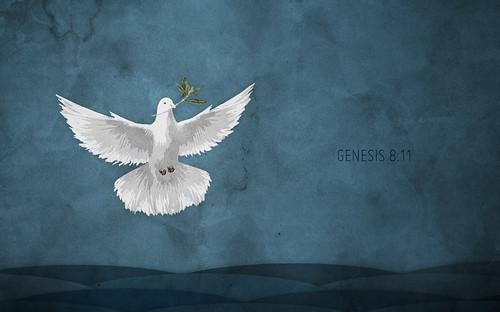 genesis 8-11_905