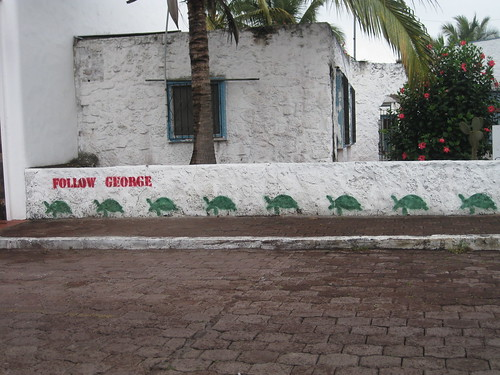 Follow George Galapagos