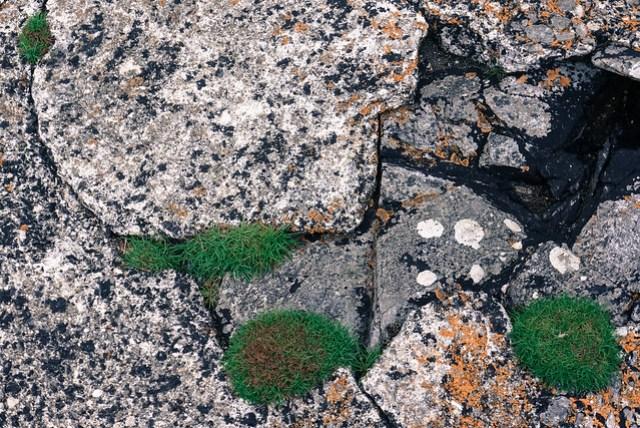 Natural & manmade textures