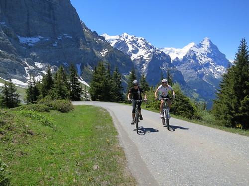 road to Grosse Scheidegg