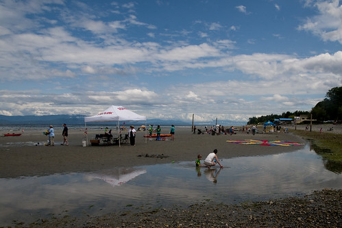 Touch tanks at Qualicum Beach Day