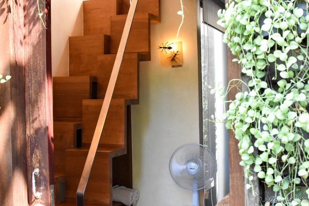 Bangkok Tree House-7