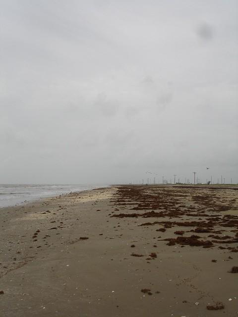 Holly Beach in 2006