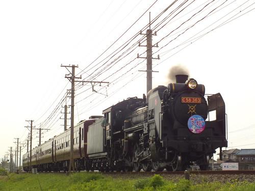 C58 363(あの花芝桜HM) @大麻生〜明戸