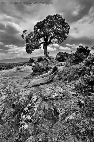 The Crooked in Monochrome | Black Canyon of the Gunnison National Park, CO | May 2012 by Somnath Mukherjee Photoghaphy