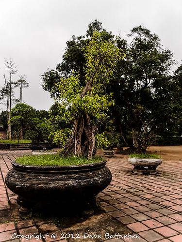 Thien Mu Pagoda 6