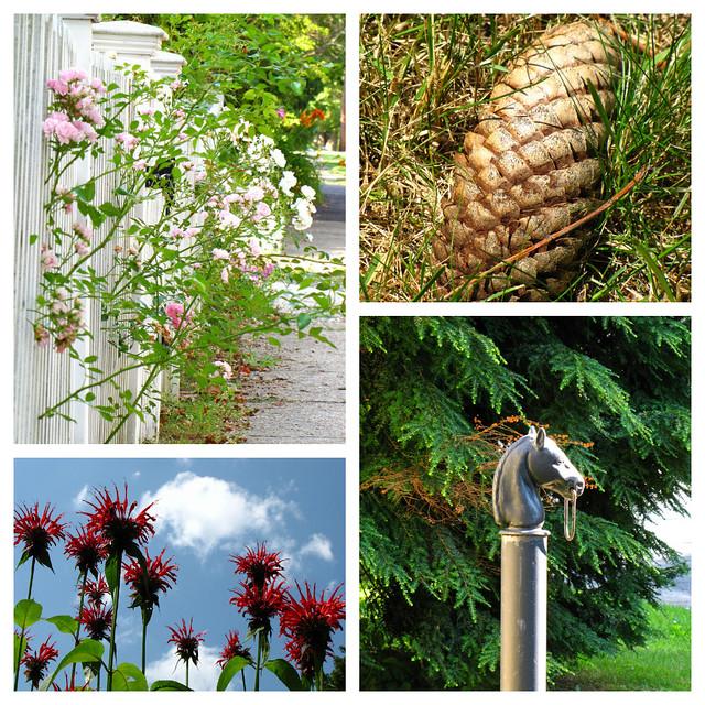 Gardens of Norfolk 2