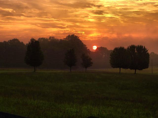 Landrum Sunrise 2