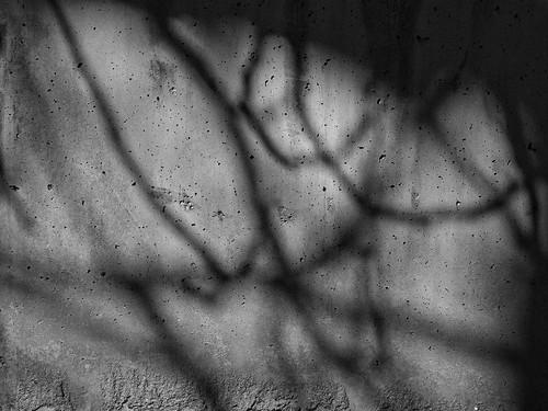 Com pot ser la por dels altres. by Barcelombres
