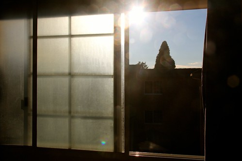 Out my window - July 28th 2012 by therainbowfish