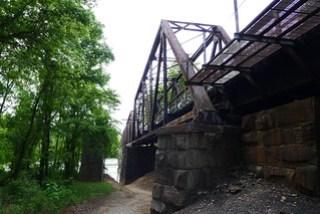 Palmetto Trail-006