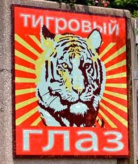 Amur Tiger Propoganda
