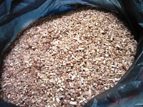 Dayak new unpolished rice