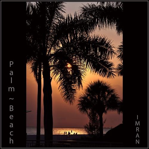 Palm ~ Beach. Far From Palm Beach! - IMRAN™ by ImranAnwar