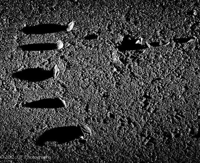 2012_Jul_17_Shadow_001
