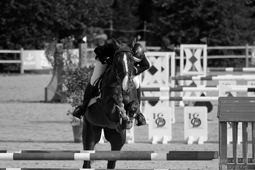 22072012-_MG_1703 - Grand National Sandillon 2012 by Yannick BARBIER