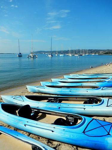 row o' kayaks