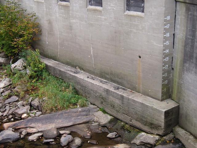 Flood lines