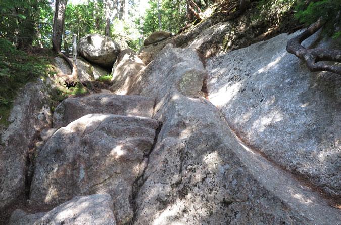 Blueberry Ledge Trail Rock Scramble