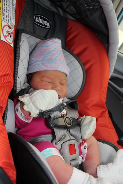 Harper's car ride home