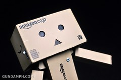 Revoltech Danboard Mini Amazon Box Version Review & Unboxing (37)