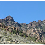 Providence Mountains State Recreational Area