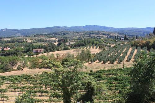 20120809_5123_Arezzo-countryside