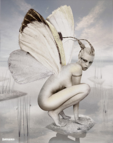 640x810_2933_Froggyfly_fairy_butterfly_girl_fantasy_photo_photography_digital_art