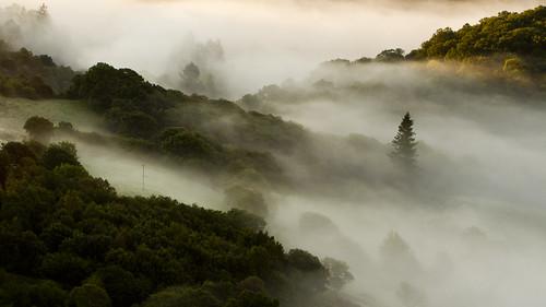 The misty vale