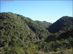 322ª Trilha 4 Cachoeiras do Parque Pinhal - Itaara RS_006