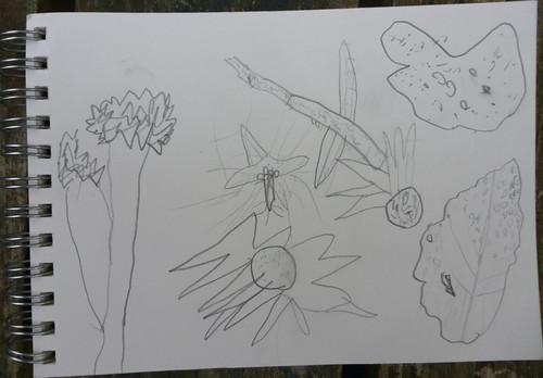 garden sketch waif 1