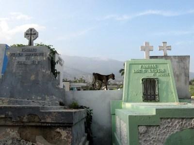 Haiti Weekend 042