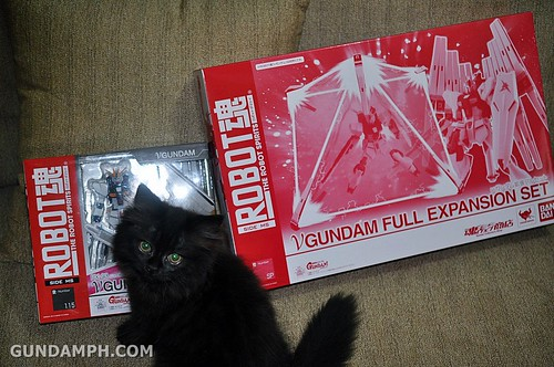 haul RD Nu gundam with full extension set (2)